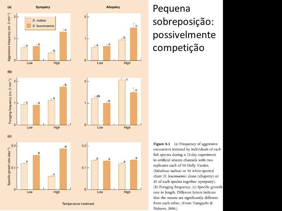 Cracas escocesas Adultos em zonas diferentes, jovens de uma das espécies ocorrendo com a outra (na parte baixa).
