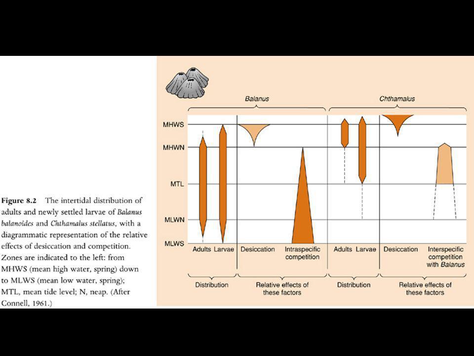 Ambientes flutuantes explicam coexistência.Previsibilidade da variação – efeitos sobre a riqueza.