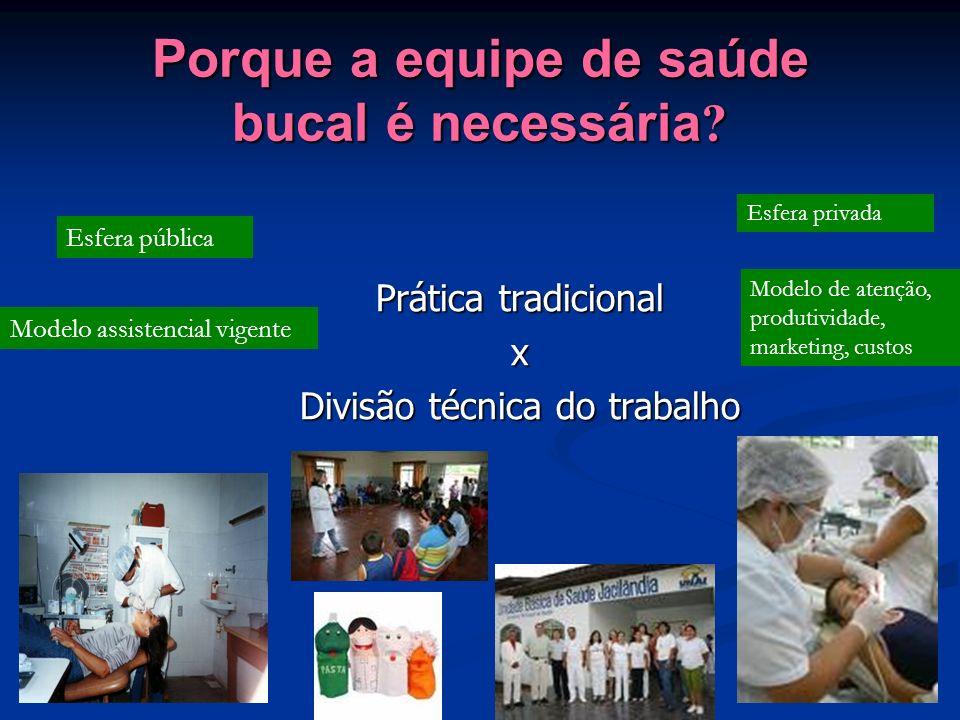 Cirurgião-Dentista Perfil do formando em Odontologia: o Cirurgião Dentista, com formação generalista, humanista, crítica e reflexiva, Diretrizes Curriculares do MEC