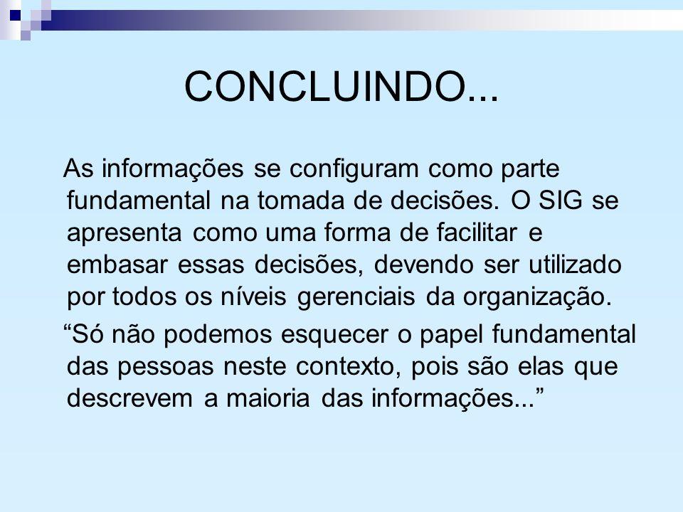 CONCLUINDO... As informações se configuram como parte fundamental na tomada de decisões. O SIG se apresenta como uma forma de facilitar e embasar essa