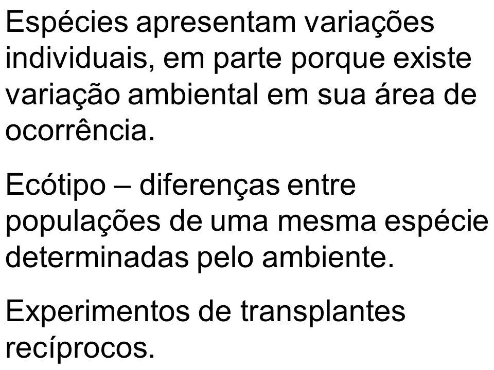 Espécies apresentam variações individuais, em parte porque existe variação ambiental em sua área de ocorrência. Ecótipo – diferenças entre populações