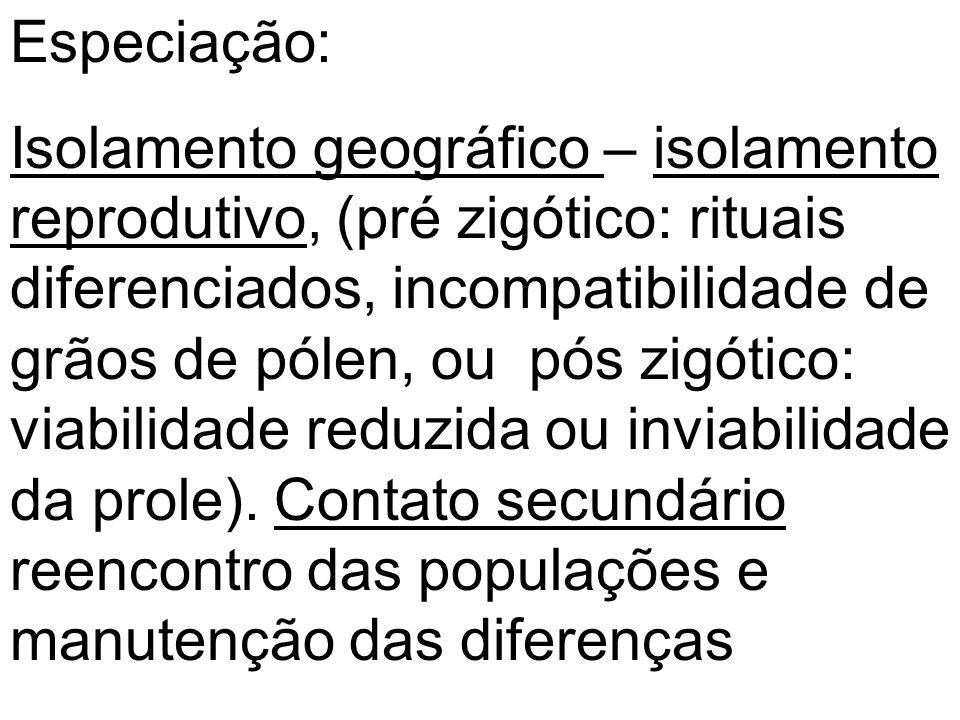 Especiação: Isolamento geográfico – isolamento reprodutivo, (pré zigótico: rituais diferenciados, incompatibilidade de grãos de pólen, ou pós zigótico