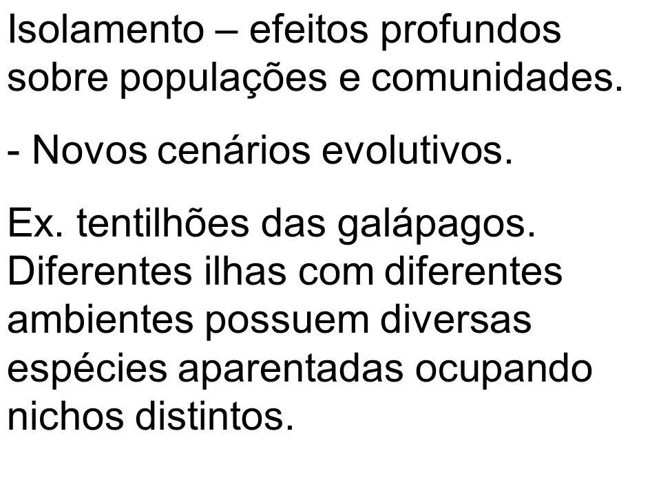 Isolamento – efeitos profundos sobre populações e comunidades. - Novos cenários evolutivos. Ex. tentilhões das galápagos. Diferentes ilhas com diferen