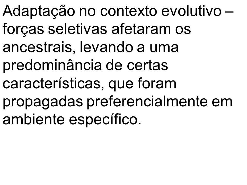 Adaptação no contexto evolutivo – forças seletivas afetaram os ancestrais, levando a uma predominância de certas características, que foram propagadas