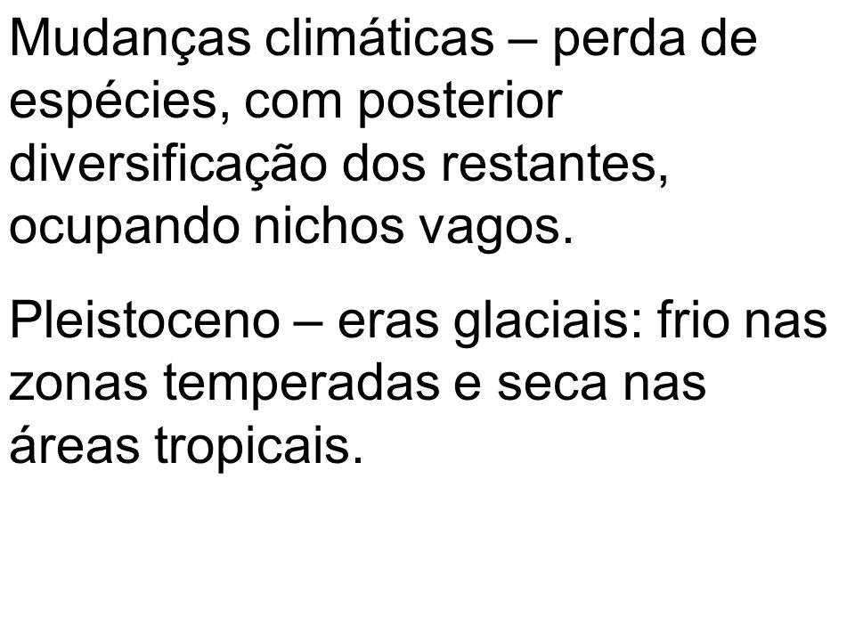 Mudanças climáticas – perda de espécies, com posterior diversificação dos restantes, ocupando nichos vagos. Pleistoceno – eras glaciais: frio nas zona