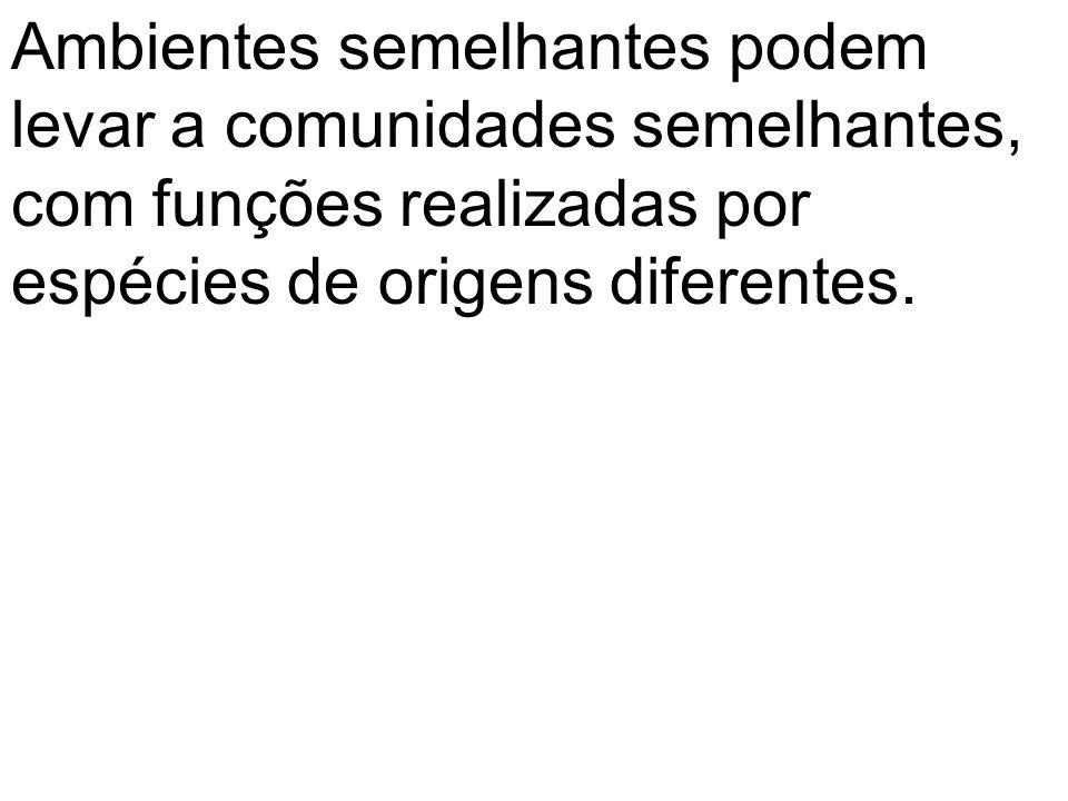 Ambientes semelhantes podem levar a comunidades semelhantes, com funções realizadas por espécies de origens diferentes.