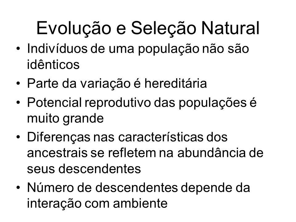 Evolução e Seleção Natural Indivíduos de uma população não são idênticos Parte da variação é hereditária Potencial reprodutivo das populações é muito