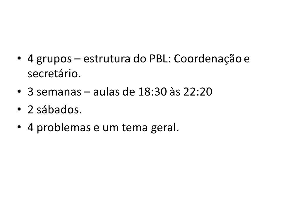 4 grupos – estrutura do PBL: Coordenação e secretário. 3 semanas – aulas de 18:30 às 22:20 2 sábados. 4 problemas e um tema geral.