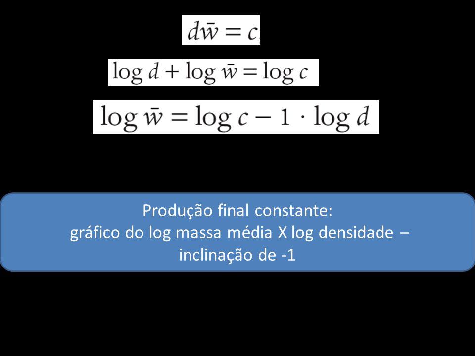 Produção final constante: gráfico do log massa média X log densidade – inclinação de -1