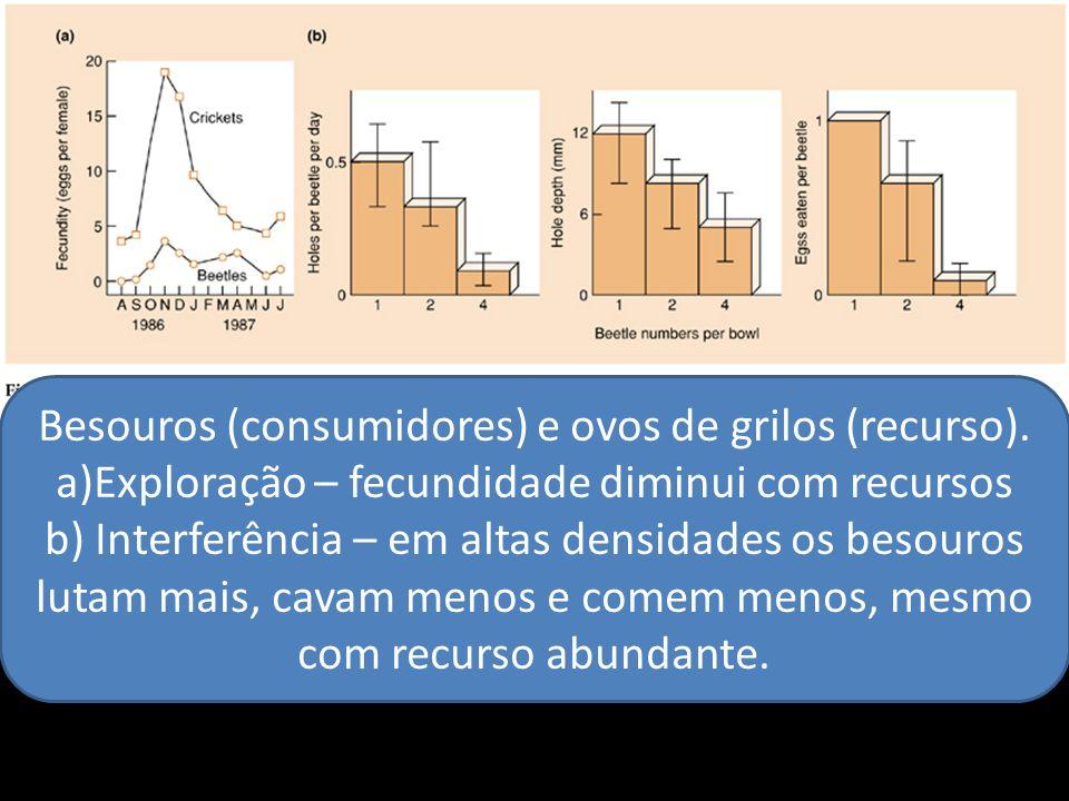 Besouros (consumidores) e ovos de grilos (recurso). a)Exploração – fecundidade diminui com recursos b) Interferência – em altas densidades os besouros