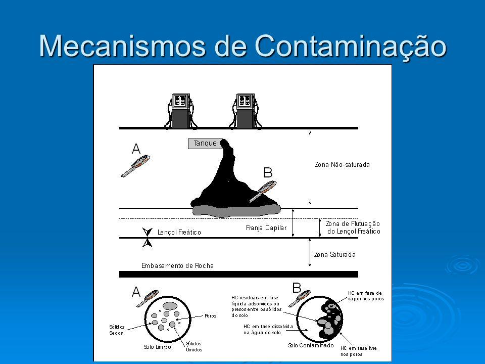 Mecanismos de Contaminação