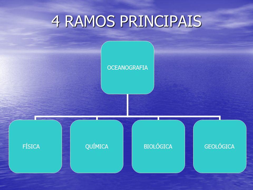 4 RAMOS PRINCIPAIS OCEANOGRAFIA FÍSICAQUÍMICABIOLÓGICAGEOLÓGICA