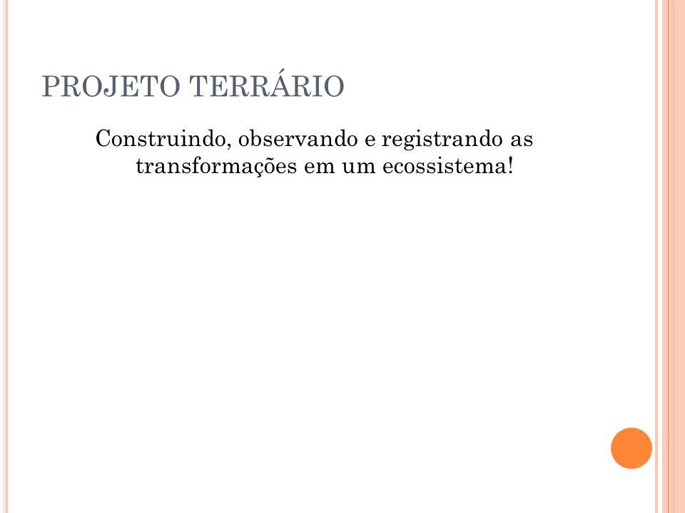 PROJETO TERRÁRIO Identificação do perfil da(a) turma(s) Alunos do 5º Ano de escolarização do ensino fundamental, com faixa etária entre 8 e 13 anos, oriundos de classes populares da periferia de Salvador.