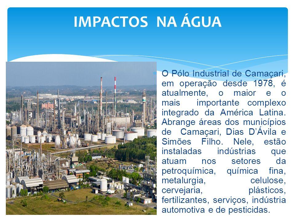 O Pólo está localizado no divisor de águas das Bacias Hidrográficas dos rios Jacuípe e Joanes, no topo dos sedimentos Formação São Sebastião.