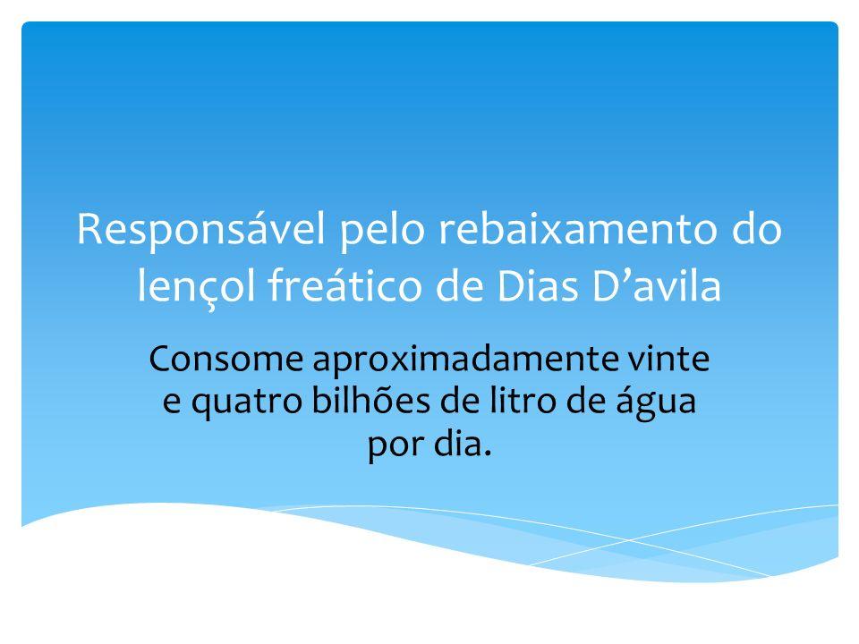 Responsável pelo rebaixamento do lençol freático de Dias Davila Consome aproximadamente vinte e quatro bilhões de litro de água por dia.