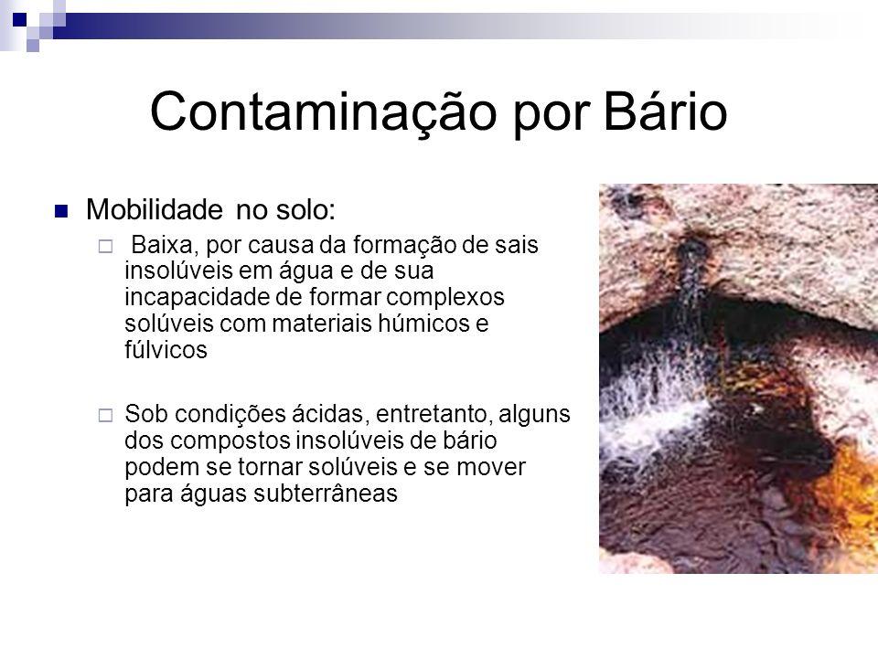 Contaminação por Bário O Ba não é essencial aos seres vivos do ponto de vista biológico e é considerado muito tóxico quando está presente no meio ambiente, mesmo em baixas concentrações, pois pode ter efeito acumulativo nos organismos dos homens e dos animais (Cunha e Machado, 2004 apud Lima, 2009).