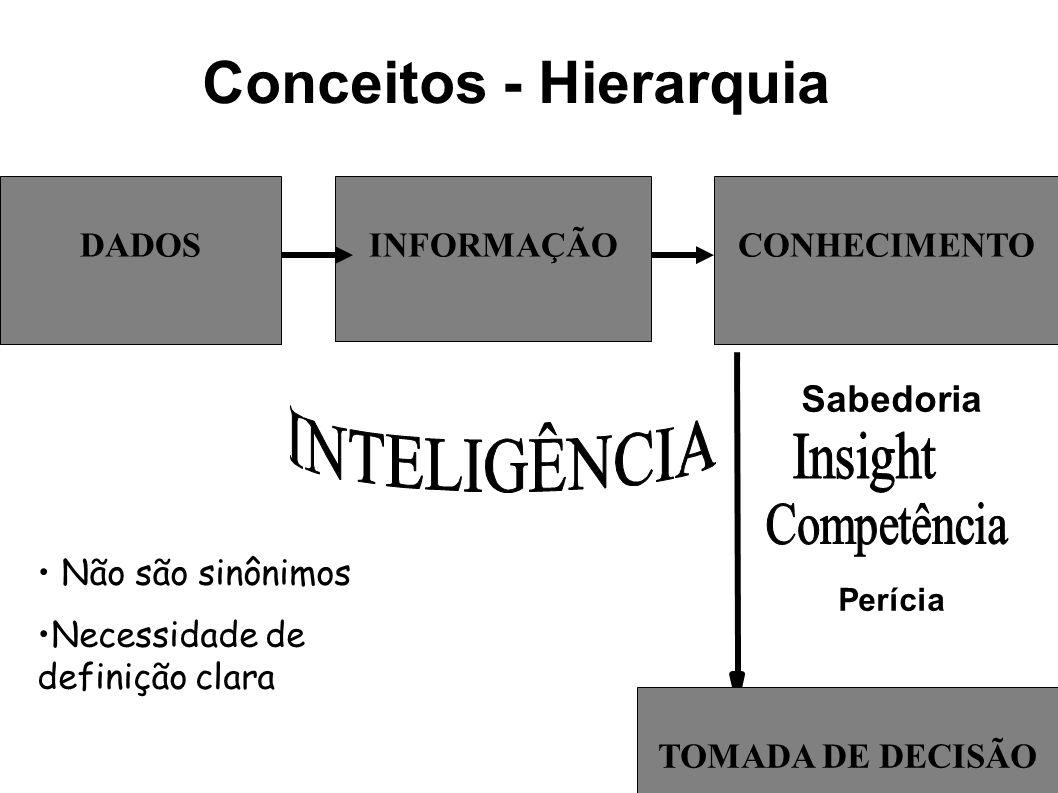 Conceitos - Hierarquia DADOS TOMADA DE DECISÃO INFORMAÇÃOCONHECIMENTO Não são sinônimos Necessidade de definição clara Sabedoria Perícia