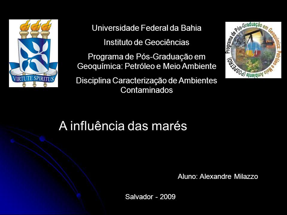 Universidade Federal da Bahia Instituto de Geociências Programa de Pós-Graduação em Geoquímica: Petróleo e Meio Ambiente Disciplina Caracterização de