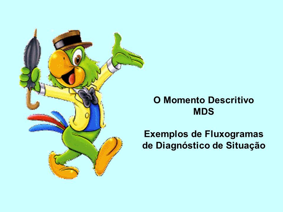 O Momento Descritivo MDS Exemplos de Fluxogramas de Diagnóstico de Situação