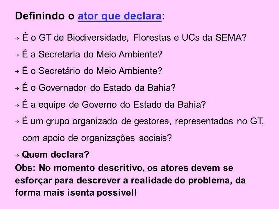 Definindo o ator que declara: É o GT de Biodiversidade, Florestas e UCs da SEMA.
