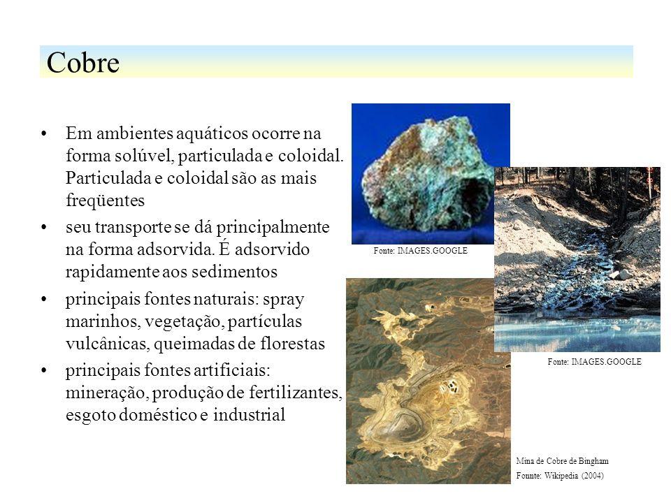 Em ambientes aquáticos ocorre na forma solúvel, particulada e coloidal. Particulada e coloidal são as mais freqüentes seu transporte se dá principalme