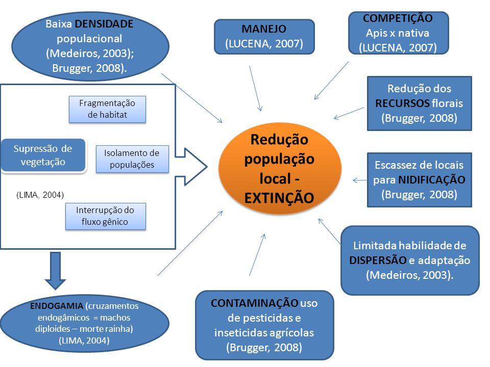 Supressão de vegetação (LIMA, 2004) Baixa DENSIDADE populacional (Medeiros, 2003); Brugger, 2008). MANEJO (LUCENA, 2007) Redução dos RECURSOS florais