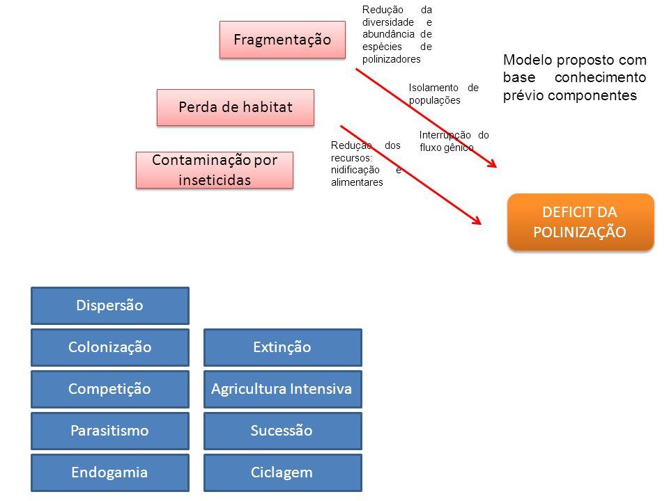 DEFICIT DA POLINIZAÇÃO Fragmentação Perda de habitat Contaminação por inseticidas Dispersão Sucessão Competição CiclagemEndogamia Colonização Parasiti