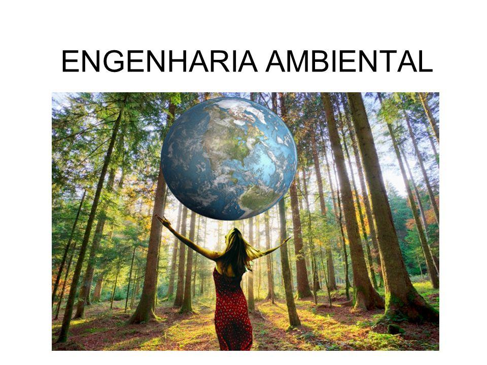 É um ramo da engenharia que estuda os problemas ambientais de forma integrada nas suas dimensões ecológica, social, econômica e tecnológica, com vista a promover o desenvolvimento sustentável.