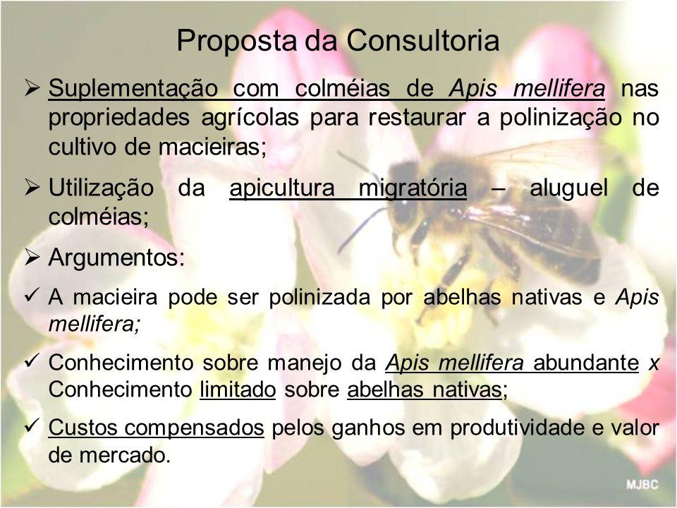 Proposta da Consultoria Suplementação com colméias de Apis mellifera nas propriedades agrícolas para restaurar a polinização no cultivo de macieiras;
