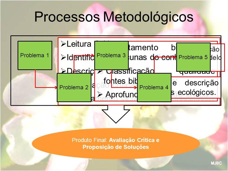 Processos Metodológicos Problema 1 Leitura Crítica Identificação aspectos falhos relatório Descrição evidências Formulação críticas Levantamento lacun