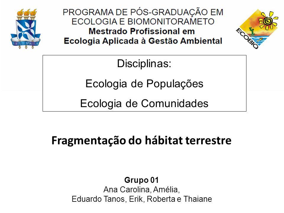 Fragmentação do hábitat terrestre Grupo 01 Ana Carolina, Amélia, Eduardo Tanos, Erik, Roberta e Thaiane Disciplinas: Ecologia de Populações Ecologia d