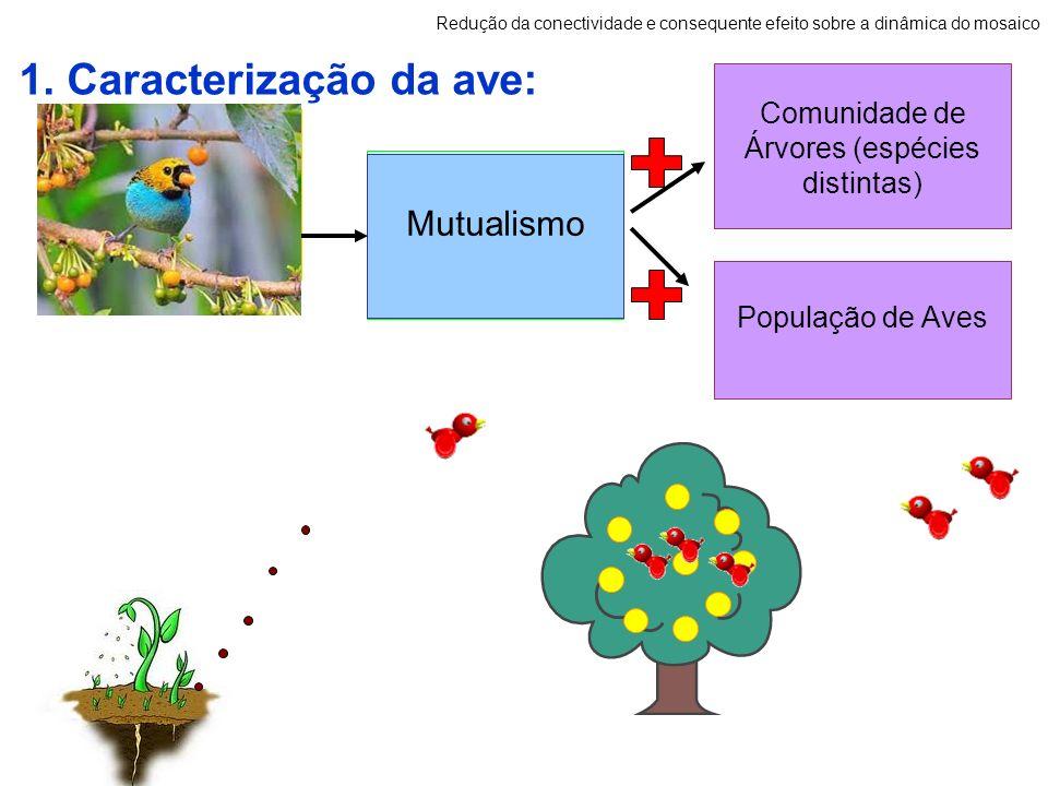 Hábito Alimentar 1. Caracterização da ave: Redução da conectividade e consequente efeito sobre a dinâmica do mosaico Relação Ecológica Dispersão e Rec