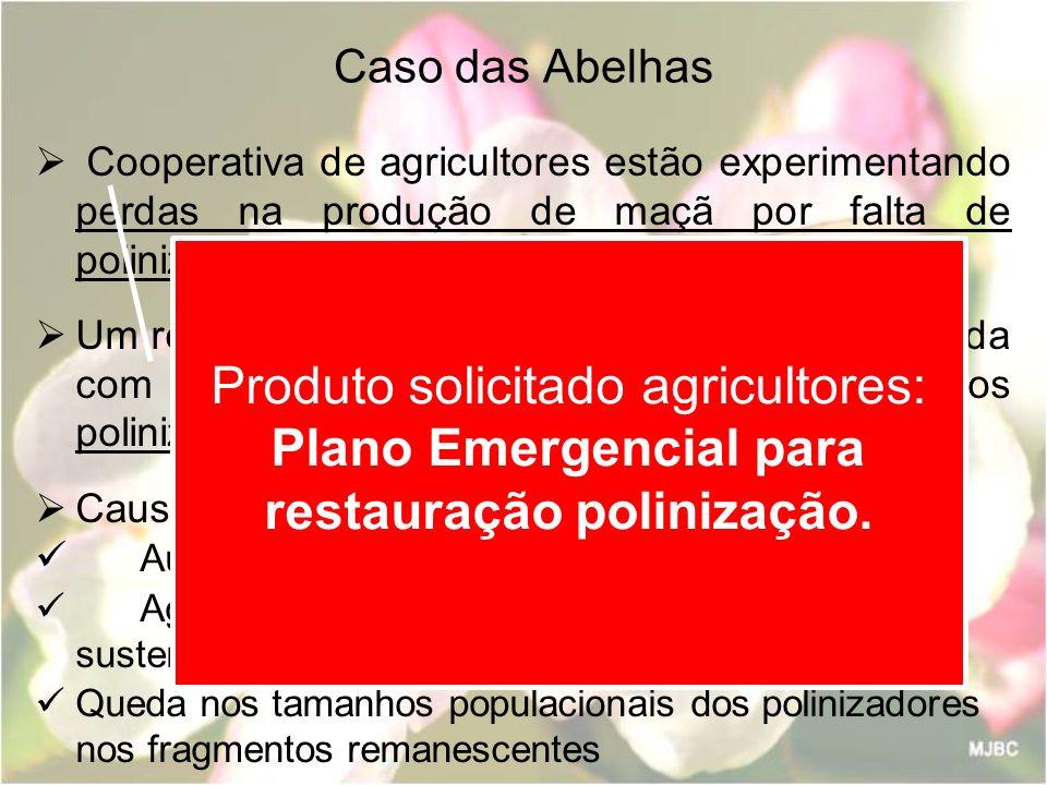 Caso das Abelhas Cooperativa de agricultores estão experimentando perdas na produção de maçã por falta de polinização adequada. Um relatório de diagnó