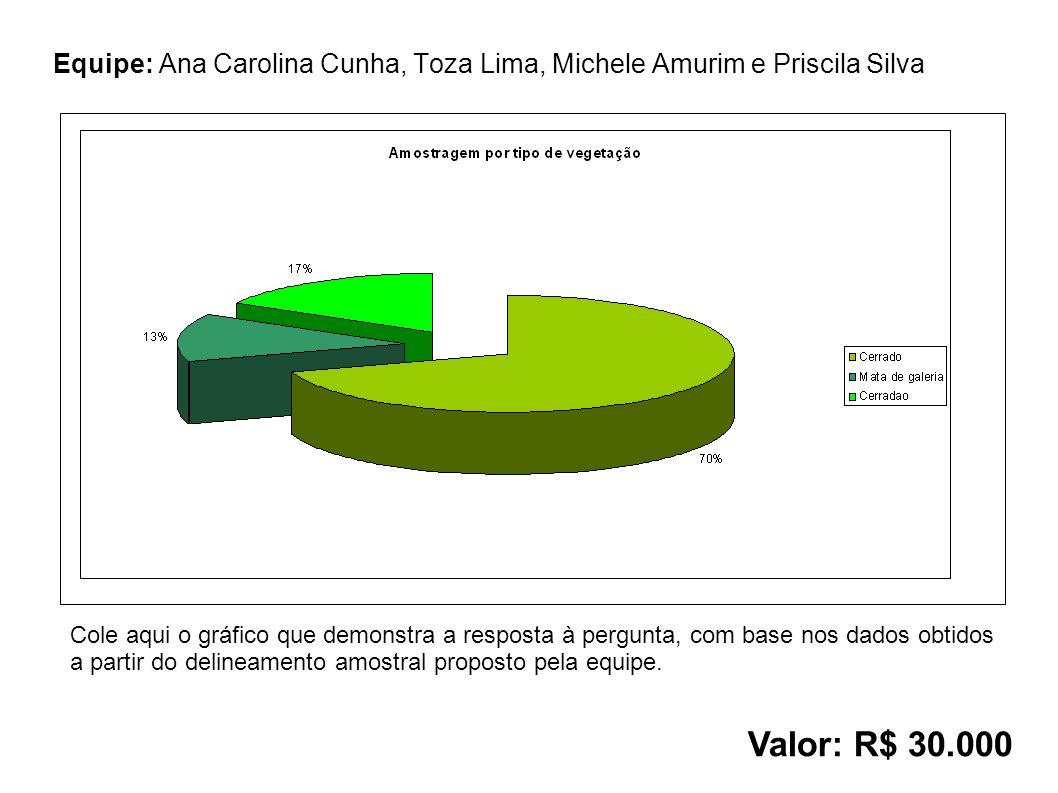 Equipe: Ana Carolina Cunha, Toza Lima, Michele Amurim e Priscila Silva Valor: R$ 30.000 Cole aqui o gráfico que demonstra a resposta à pergunta, com base nos dados obtidos a partir do delineamento amostral proposto pela equipe.