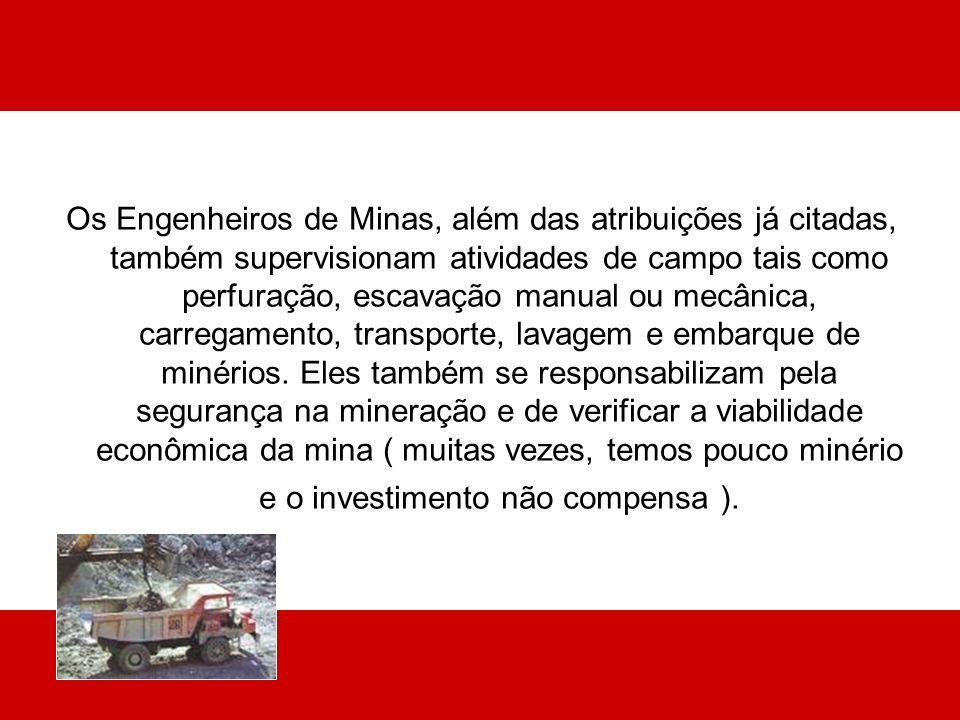 Os Engenheiros de Minas, além das atribuições já citadas, também supervisionam atividades de campo tais como perfuração, escavação manual ou mecânica,