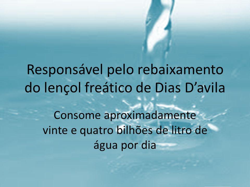 Responsável pelo rebaixamento do lençol freático de Dias Davila Consome aproximadamente vinte e quatro bilhões de litro de água por dia