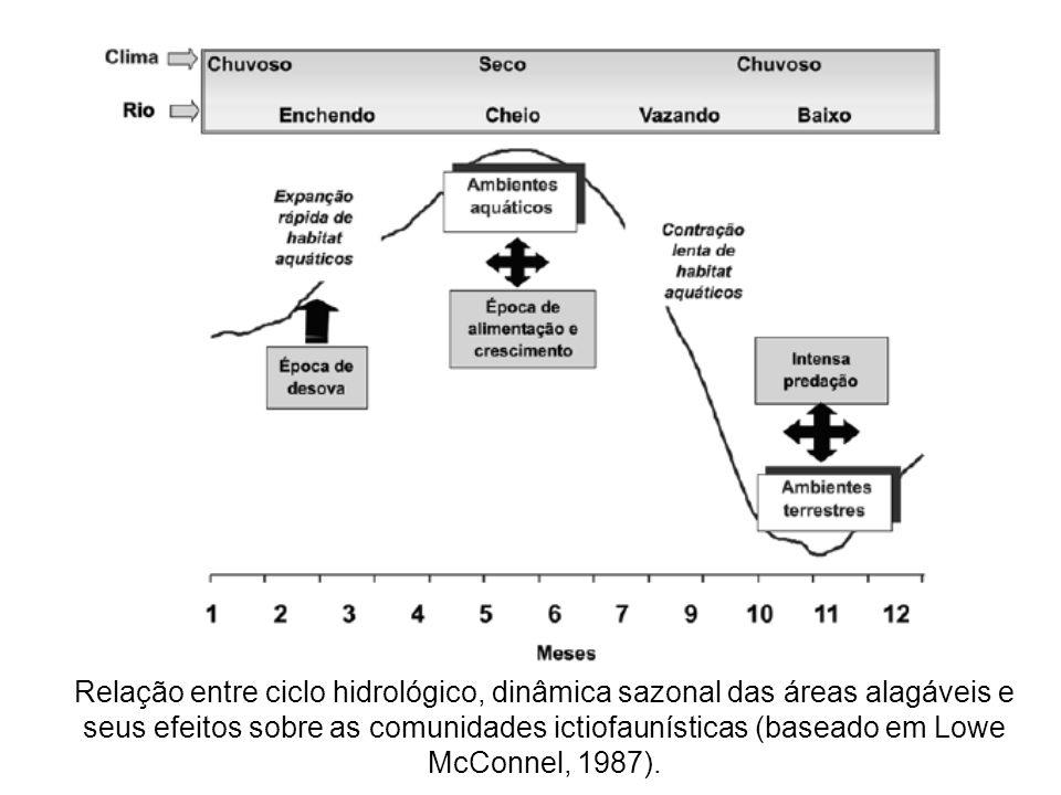 Relação entre ciclo hidrológico, dinâmica sazonal das áreas alagáveis e seus efeitos sobre as comunidades ictiofaunísticas (baseado em Lowe McConnel, 1987).