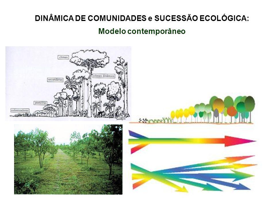 DINÂMICA DE COMUNIDADES e SUCESSÃO ECOLÓGICA: Modelo contemporâneo