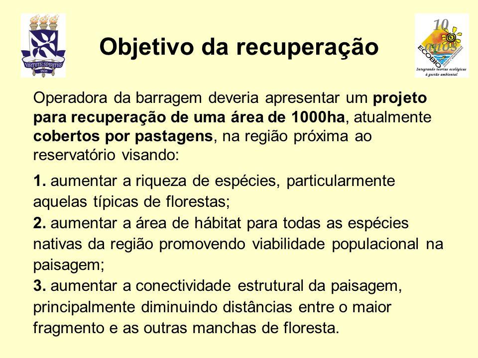 Operadora da barragem deveria apresentar um projeto para recuperação de uma área de 1000ha, atualmente cobertos por pastagens, na região próxima ao re