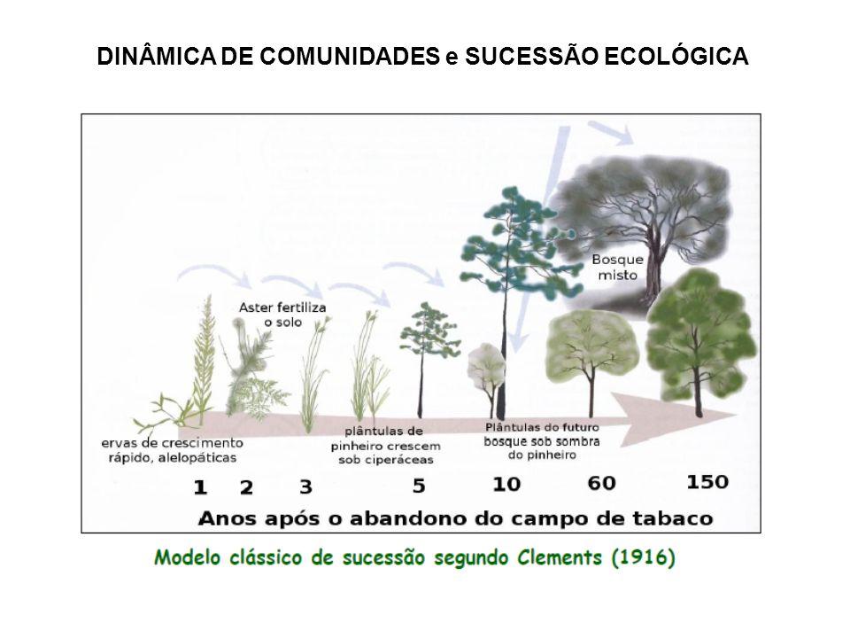 DINÂMICA DE COMUNIDADES e SUCESSÃO ECOLÓGICA