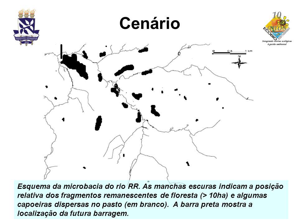 Cenário Esquema da microbacia do rio RR. As manchas escuras indicam a posição relativa dos fragmentos remanescentes de floresta (> 10ha) e algumas cap