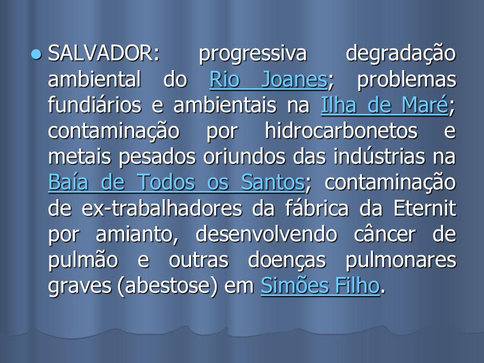 SALVADOR: progressiva degradação ambiental do Rio Joanes; problemas fundiários e ambientais na Ilha de Maré; contaminação por hidrocarbonetos e metais