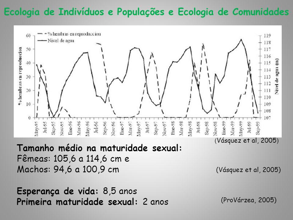 Tamanho médio na maturidade sexual: Fêmeas: 105,6 a 114,6 cm e Machos: 94,6 a 100,9 cm Esperança de vida: 8,5 anos Primeira maturidade sexual: 2 anos