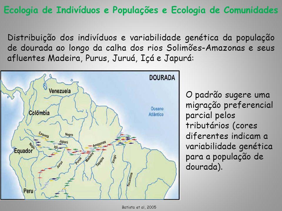 Ecologia de Indivíduos e Populações e Ecologia de Comunidades O padrão sugere uma migração preferencial parcial pelos tributários (cores diferentes in