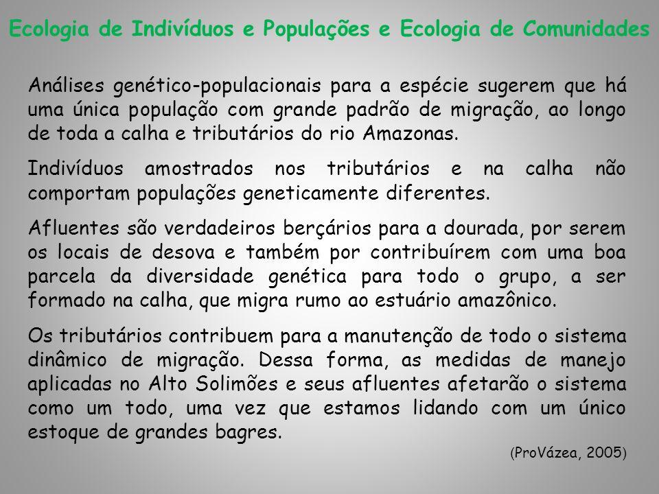 Ecologia de Indivíduos e Populações e Ecologia de Comunidades Análises genético-populacionais para a espécie sugerem que há uma única população com gr
