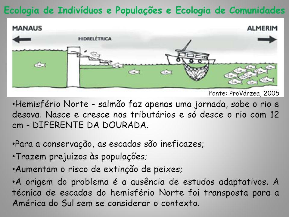 Ecologia de Indivíduos e Populações e Ecologia de Comunidades Hemisfério Norte - salmão faz apenas uma jornada, sobe o rio e desova. Nasce e cresce no