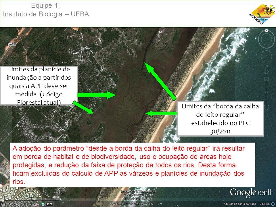 Equipe 1: Instituto de Biologia – UFBA Limites da planície de inundação a partir dos quais a APP deve ser medida (Código Florestal atual) Limites da b