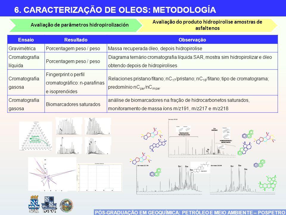 PÓS-GRADUAÇÃO EM GEOQUÍMICA: PETRÓLEO E MEIO AMBIENTE – POSPETRO 6. CARACTERIZAÇÃO DE OLEOS: METODOLOGÍA Avaliação de parâmetros hidropirolización Ava