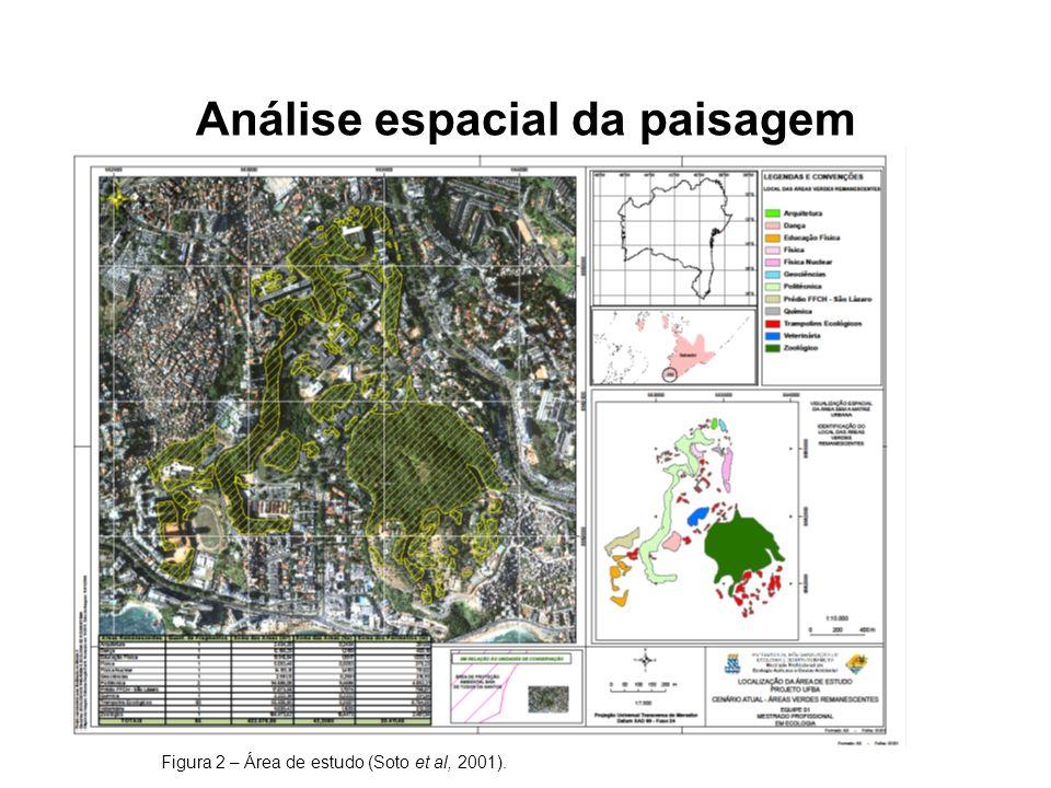 Análise espacial da paisagem Figura 2 – Área de estudo (Soto et al, 2001).