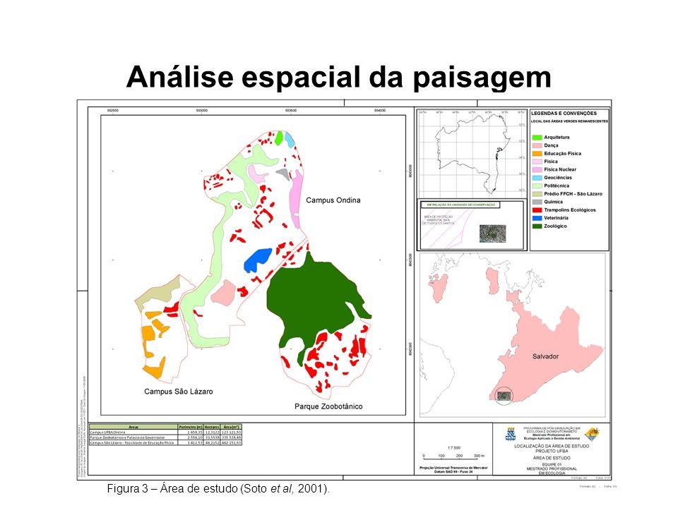 Análise espacial da paisagem Figura 3 – Área de estudo (Soto et al, 2001).